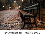 bench in central park | Shutterstock . vector #751431919