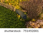 aerial view of the pond in the... | Shutterstock . vector #751452001