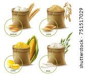 set of agricultural cereals... | Shutterstock .eps vector #751517029