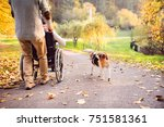 Stock photo unrecognizable senior man and elderly woman in wheelchair in autumn nature man with his mother or 751581361
