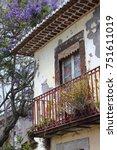 Small photo of Jacaranda tree and weathered facade in Funchal on the island of Madeira, Jacaranda mimosifolia