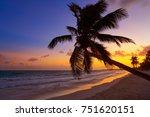 tulum beach sunset palm tree in ... | Shutterstock . vector #751620151
