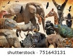 wild animals  birds and... | Shutterstock . vector #751643131
