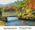 japanese pond. | Shutterstock . vector #751657519