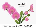 vintage floral greeting card...   Shutterstock .eps vector #751667545