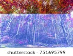 autumn beautiful natural colors ... | Shutterstock . vector #751695799