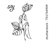 vector hand drawn sketch of soy ... | Shutterstock .eps vector #751744909