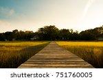 wooden pier in south carolina... | Shutterstock . vector #751760005