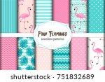 cute set of pink flamingo... | Shutterstock .eps vector #751832689