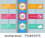 vector infographic design... | Shutterstock .eps vector #751843375