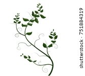 branch with curls and leaves ... | Shutterstock .eps vector #751884319
