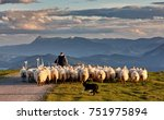 Flock of sheep with shepherd and dog in Oiz, Basque Country
