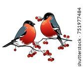 beautiful retro christmas card... | Shutterstock .eps vector #751977484