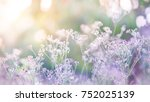 beautiful pastel floral field.... | Shutterstock . vector #752025139