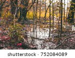 natural background during fall... | Shutterstock . vector #752084089