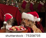 Stock photo cat and dog eating and drinking santa s cookies and milk 75208735