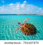 turtles photomount in caribbean ... | Shutterstock . vector #752107375