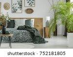 plant in black vase on table in ...   Shutterstock . vector #752181805