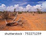 Savanna In Tsavo National Park...