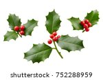 christmas holly with red... | Shutterstock . vector #752288959