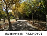 walking among the trees in... | Shutterstock . vector #752340601