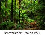 rainforest view  queensland ... | Shutterstock . vector #752554921