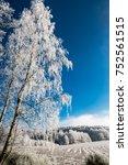Romantic Winter Scene With...