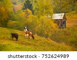 autumn landscape with cows...   Shutterstock . vector #752624989