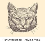 portrait of a cat. hand drawn... | Shutterstock .eps vector #752657461