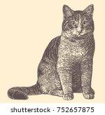 cat. hand drawn engraving.... | Shutterstock .eps vector #752657875