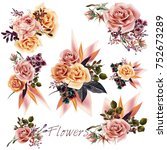 big collection of vector roses... | Shutterstock .eps vector #752673289