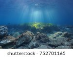 underwater seascape natural... | Shutterstock . vector #752701165