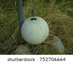 Tetherball In The Garden ...