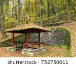 autumn wooden gazebo in forest. ... | Shutterstock . vector #752750011