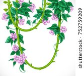 liana with pink flowers... | Shutterstock .eps vector #752759209