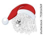 hungarian sheepdog wearing... | Shutterstock .eps vector #752816569