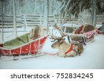 reindeer sledge for santa claus ...