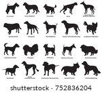 vector set of different breeds... | Shutterstock .eps vector #752836204