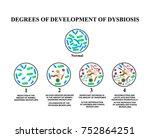 4 degrees of development of... | Shutterstock .eps vector #752864251
