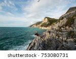The Cliff At Portovenere  La...
