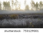 the first frost  fog in the... | Shutterstock . vector #753129001