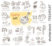 a set of curry spices. hand... | Shutterstock .eps vector #753145147