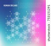 human internal organs concept... | Shutterstock .eps vector #753151291