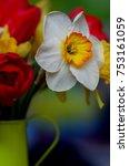 spring floral border  beautiful ...   Shutterstock . vector #753161059