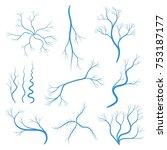 set of human veins or vessel ... | Shutterstock .eps vector #753187177