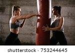 young muscular woman punching a ...   Shutterstock . vector #753244645