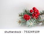 berries with fir    Shutterstock . vector #753249109