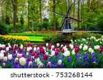 stunning spring landscape ... | Shutterstock . vector #753268144