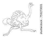 coloring  african bird ostrich... | Shutterstock .eps vector #753273031
