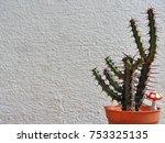 background of cactus   Shutterstock . vector #753325135